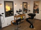 Salon_2
